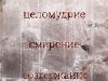 Дарья Багринцева. Lost virtue. 2013. 150x150 х.акр.поталь